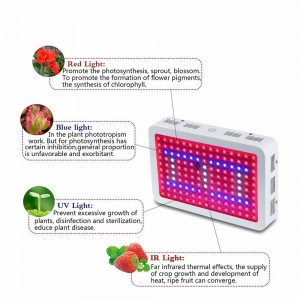 Indoor greenhouse full spectrum light 450W led light grow for hydroponic