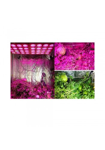 high power led grow light for greenhouse 4 holes double chips 840W led grow light